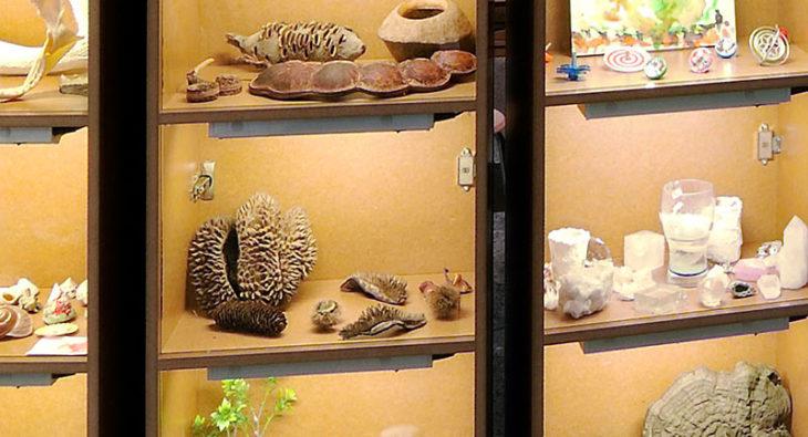 Wunderwelten Ausstellung Museum fuer Naturkunde Berlin Tischlerei holzart