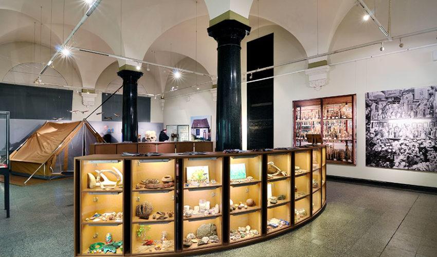 Naturkundemuseum – Raum der Fossilien